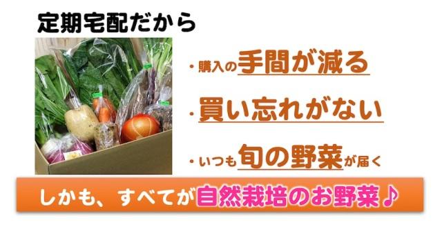 自然栽培の野菜セット