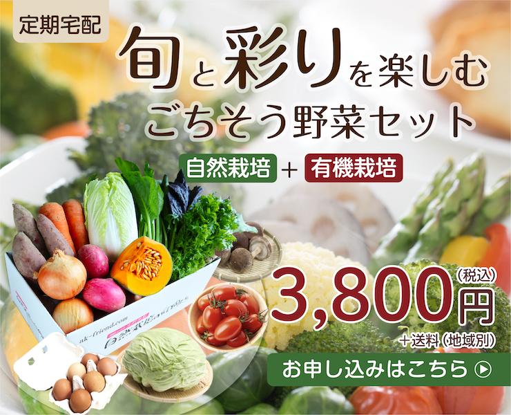 旬と彩りを楽しむごちそう野菜セット